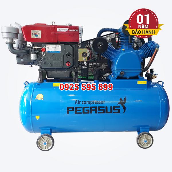 Máy nén khí đầu nổ chạy bằng dầu Diesel Pegasus TM-W-2.0/12.5-500L