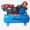 Máy nén khí đầu nổ chạy bằng dầu Diesel Pegasus TM-W-2.0/8-330L
