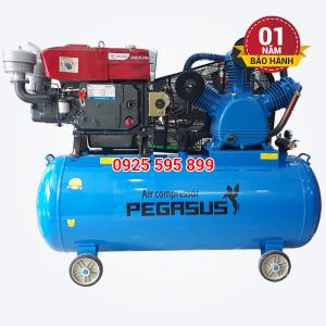 Máy nén khí đầu nổ chạy bằng dầu Diesel Pegasus TM-W-2.0/8-500L