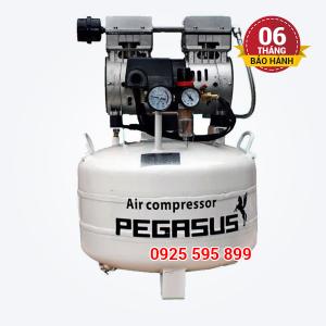 Máy nén khí không dầu giảm âm Pegasus TM-OF550-40L